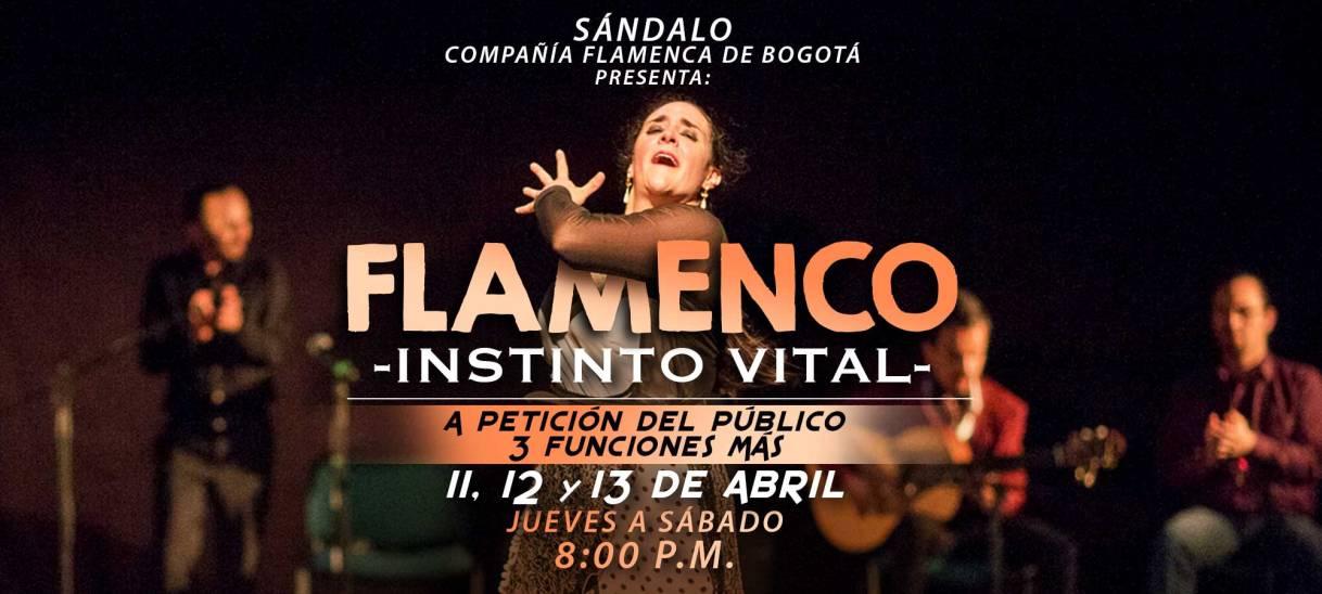Flamenco Instinto Vital